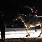 Konjenikova pot (foto MP produkcija)