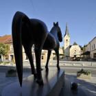 ECOC 2012 Slovenj Gradec (foto M. Wenzel)